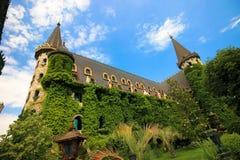 Dans l'amour avec le vent, le château de Ravadinovo - la Bulgarie Image libre de droits