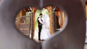 Dans l'amour avec un ménage marié banque de vidéos