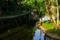 Dans l'amour la paire marche en parc près du lac Images libres de droits