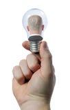 Dans l'ampoule Photographie stock libre de droits