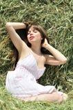 Dans l'herbe sèche photographie stock libre de droits