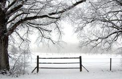 dans l'hiver Photos libres de droits