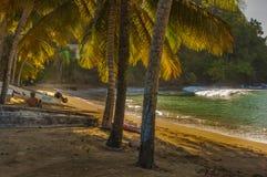 dans la baie ensanglantée Tobago Photographie stock