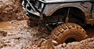 Dans la boue Photos stock