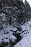 Dans la forêt Carpathiens d'hiver Beaucoup de neige, arbres a empaqueté dans la neige photos stock