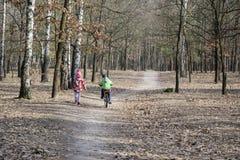 Dans la forêt d'automne la fille va à côté du garçon qui voyage par le Bi Photos libres de droits
