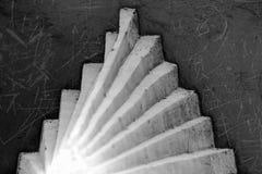 Dans la lumière Image stock