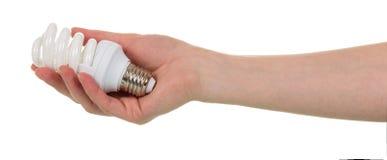 Dans la main femelle l'ampoule fluorescente est isolée sur le backg blanc Photos stock
