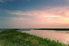 Dans la mer du fleuve Image stock