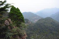 Dans la montagne Photo libre de droits