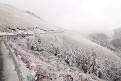 Dans la neige de montagne de Taïwan Nantou Hehuan Photographie stock libre de droits