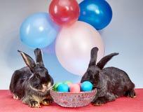 Dans la perspective des ballons les lapins près d'un vase avec des oeufs de pâques Photo stock