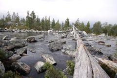 Dans la région sauvage de la Norvège Images libres de droits