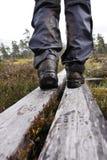 Dans la région sauvage de la Norvège Image stock