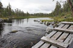 Dans la région sauvage de la Suède Image libre de droits