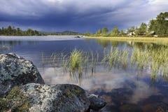 Dans la région sauvage de la Suède Photos libres de droits