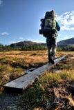 Dans la région sauvage de la Suède Photographie stock libre de droits