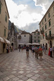 Dans la vieille ville de Kotor Photographie stock libre de droits