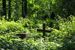 Dans le cimetière image libre de droits