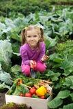 Dans le cuisine-jardin Photo libre de droits