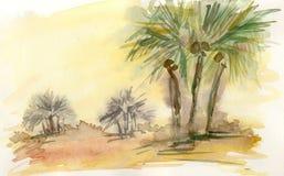 Dans le désert Photos libres de droits