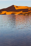 dans le désert de jaune de lac du sable et de la dune du Maroc Image libre de droits