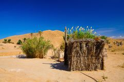 Dans le désert du Sahara, la Tunisie, Afrique du Nord photographie stock libre de droits