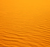 Dans le désert jaune de la colline dunaire isolée du Maroc Photographie stock