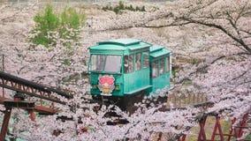 Dans le funaoka Sendaï le Japon est un autre but remarquable Pour que les touristes visitent des fleurs de cerisier en avril dans photo stock