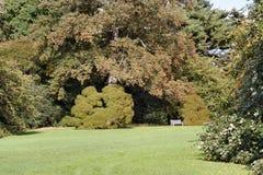 Dans le jardin 3 photos libres de droits