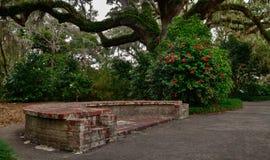 Dans le jardin Photo libre de droits