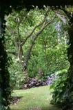 Dans le jardin Photos libres de droits