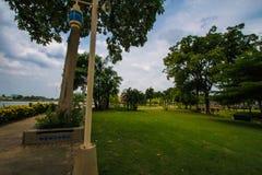 Dans le jardin avec le ciel bleu photo stock