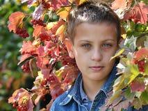 Dans le jardin d'automne Images libres de droits