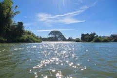 Dans le Mekong Photo libre de droits