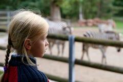 Dans le zoo photo stock
