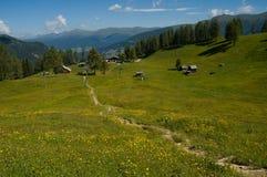 Dans les Alpes de dolomite Image stock