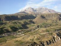 Dans les Andes Photo libre de droits