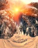 Dans les avants alpins sauvages Photos stock