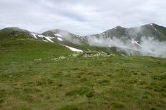 Dans les montagnes Photos stock