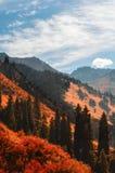 Dans les montagnes Images libres de droits