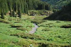 Dans les montagnes en été Images libres de droits