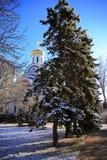 Dans les premiers rayons du soleil Au parc de Rostov-On-Don, mars Photo stock