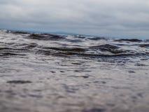 Dans les vagues Photographie stock libre de droits