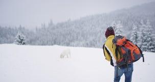 Dans un jour d'hiver au milieu de la Sib?rie un touriste a trouv? ? cot? un grand chien blanc d'une for?t neigeuse, il marchant a clips vidéos