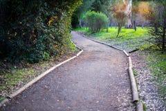 Dans un sentier de randonnée en parc de la Californie au printemps Image stock