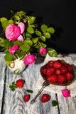 Dans une cruche peinte il y a des branches des roses et des feuilles lilas de jasmin photos libres de droits