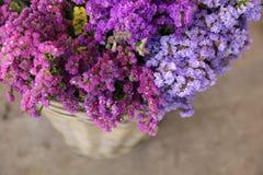 Dans une variété de panier en osier de fleurs de Salem de sinuatum ou de statice de limonium dans des couleurs roses, lilas, viol Photos libres de droits