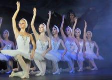 Dansa för ballerina arkivbilder
