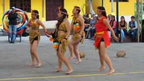 Dansa gruppen som nära dansar traditionell dans av ecuadorianska amazon i Ciudad Mitad del Mundo den turistic mitten av staden av Royaltyfria Bilder
